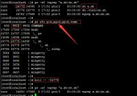 SaltStack Job 管理 及 saltutil.signal_job 模块的问题